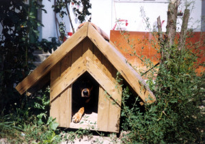 National Doghouse Day, doghouse, Blog Traffic Guru